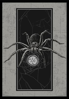 caffein-spiderweb