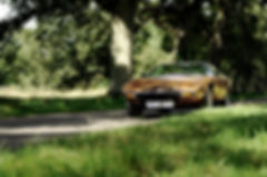 Maserati Khamsin (1).jpg