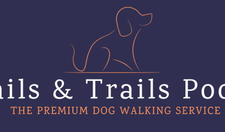 Welcome to the Tails & Trails Poole Dog Blog!