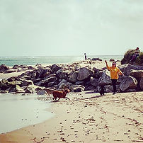dogs-on-beach-2-poole-dog-walking.jpg