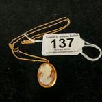 Lot 137