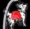 Saint Louis Senior Dog Project
