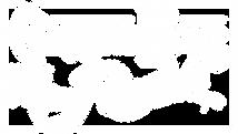 CH_logo_reverse_f.png