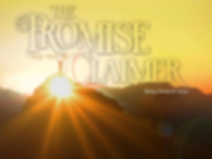 promise claimer.png