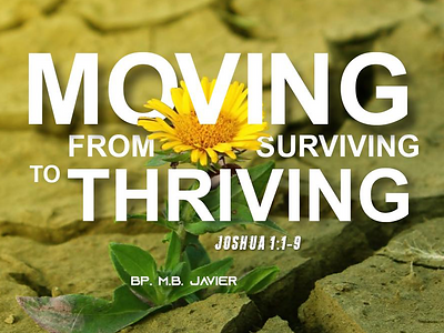 moving from surviving to thriving.png