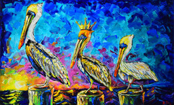 The three pelicans