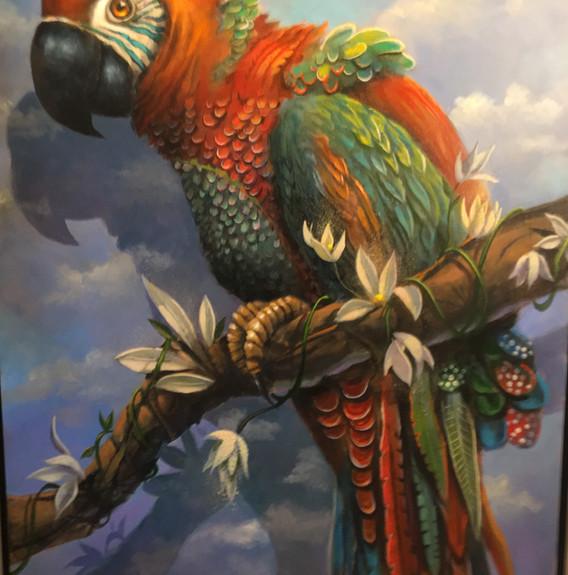 """""""Majestic Macaw"""""""