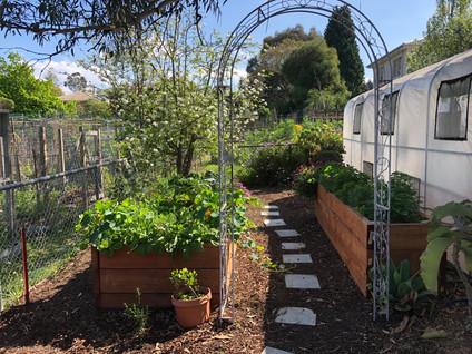 Peace Garden - Louis Multicultural Community Centre