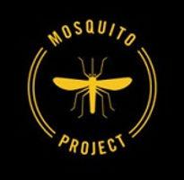 mosquito-site.jpg
