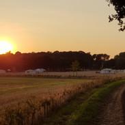 Sunset site.jpg
