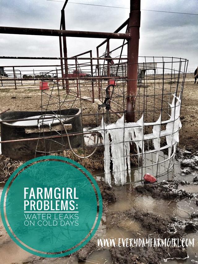 Farmgirl Problems