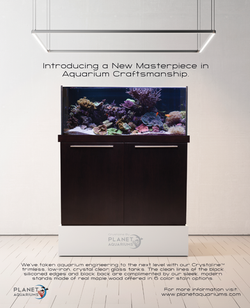 Planet Aquariums Full Page Ad