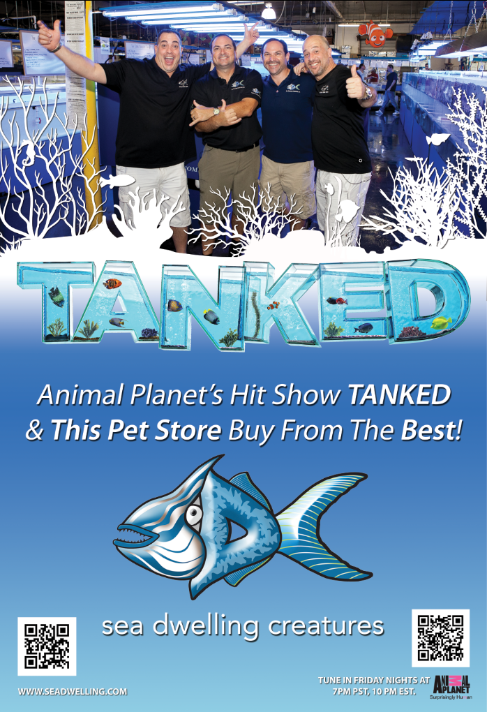 SDC Tanked Poster