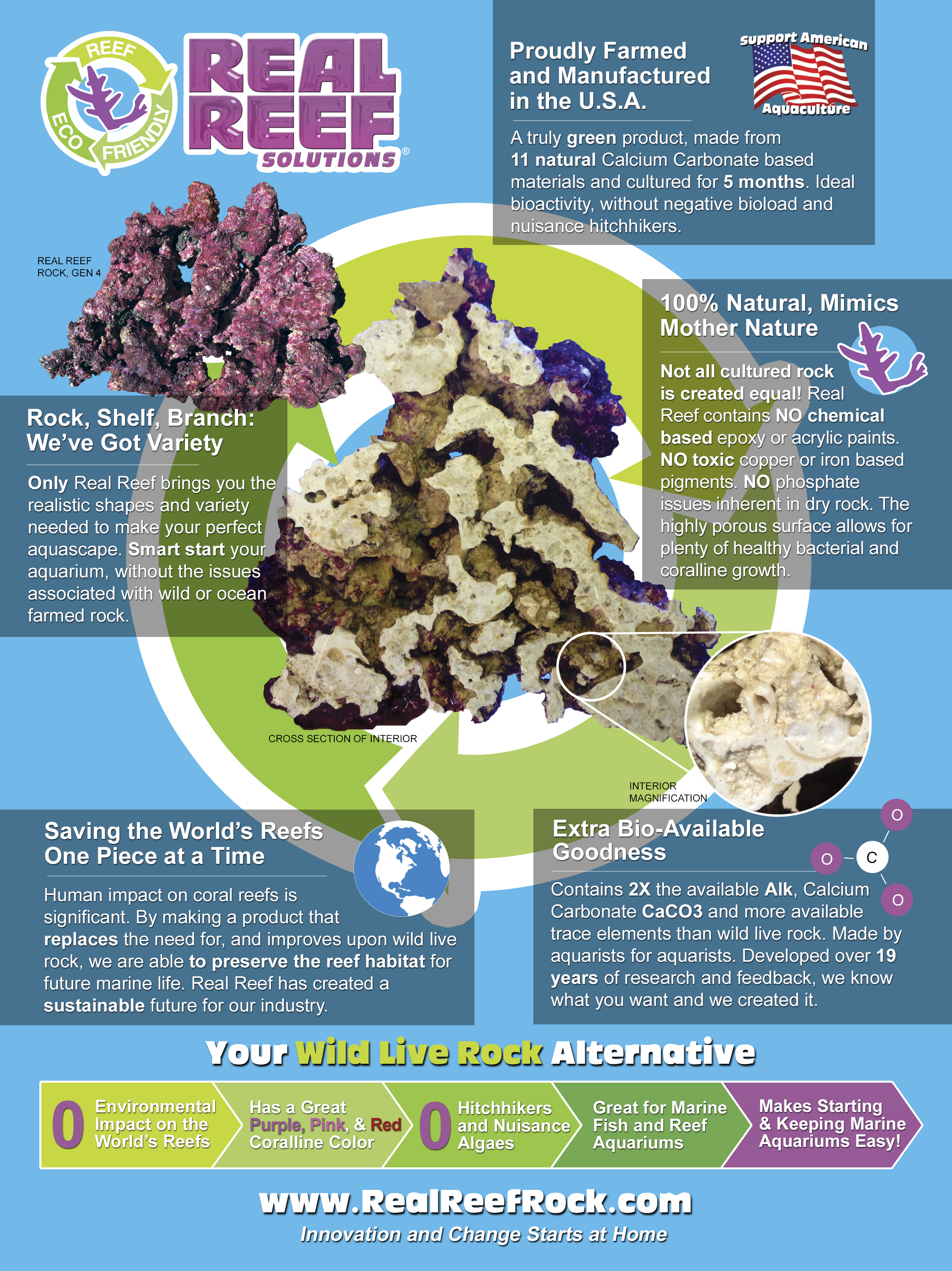 RealReef Infographic