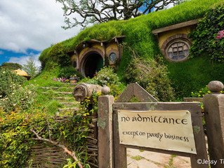 My Day in the Shire - Hobbiton - New Zealand