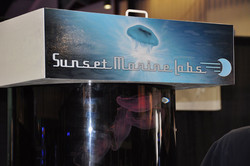 sunsetbooth2.jpg