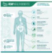 CBD OIL Benefits, Brain, Eyes, Heart, Stomach, Intestines, Skin, Bones and Joints