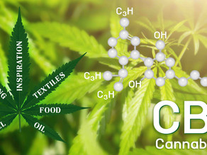 8 Fascinating Facts About CBD