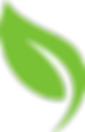 Eco Leaf logo vector - Copy.png