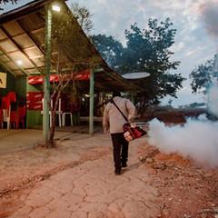 Aedes Aegypti: Índice de infestação diminui, mas ações de combate ao mosquito seguem em Boa Vista
