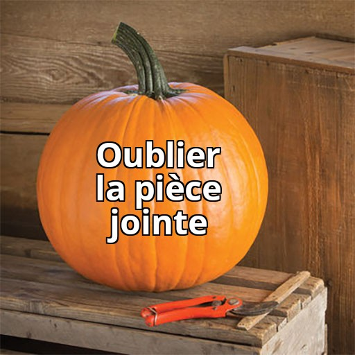Copie de Painfully Relatable Jack-O-Lant
