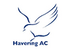 Havering AC.PNG