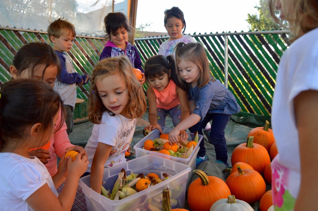 Annual Fall Pumpkin Festival
