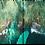 Thumbnail: Emerald Coast