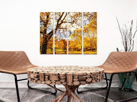 Landscape Wall Art - Central Park In Autumn