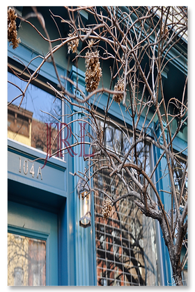 Portrait Wall Art - Storefront Branches