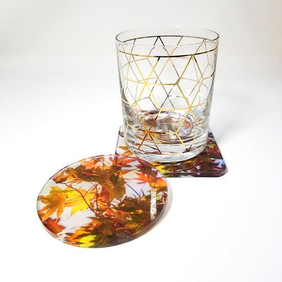 Acrylic Coaster - Fall During Summer