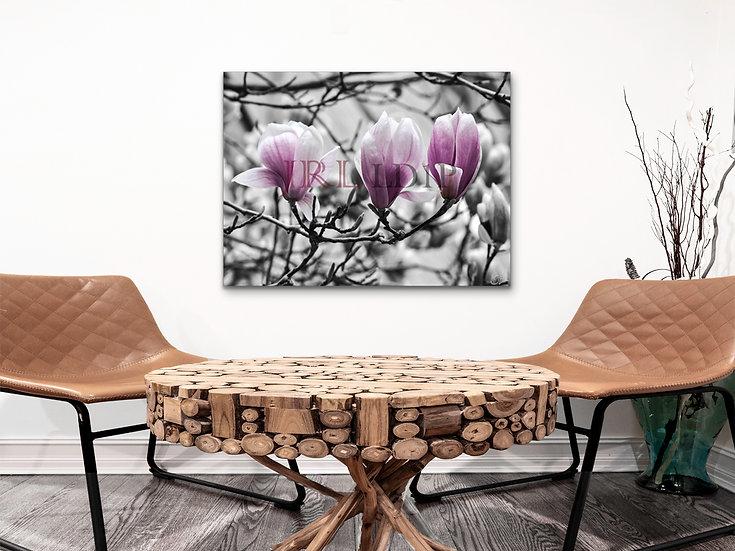 Magnolia Tree | Landscape Art