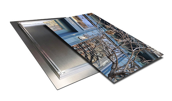 Landscape Wall Art - Storefront Branches - Art