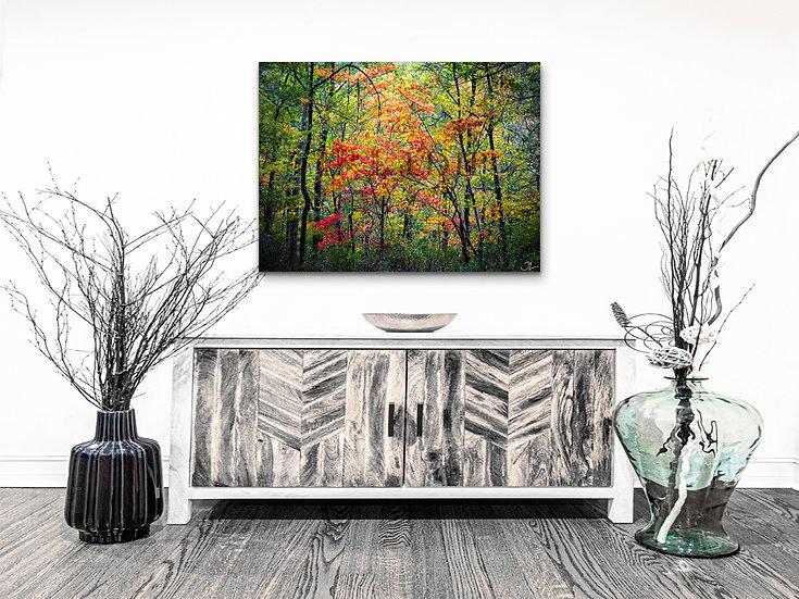 Reforestation | Sale