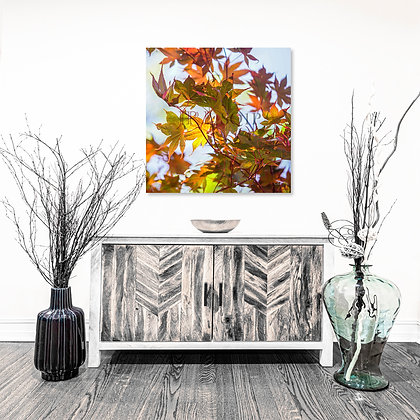 Square Wall Art - Fall During Summer