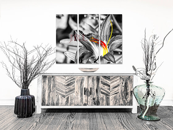 Landscape Wall Art - Fire Flower