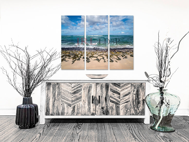 Turtle Beach | Landscape Art