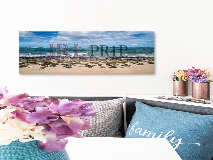 Turtle Beach | Panoramic Art