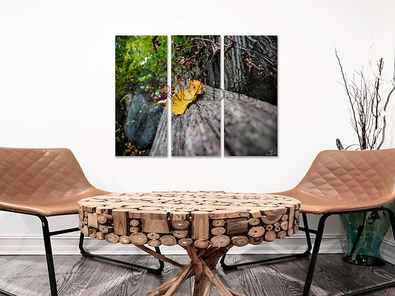Landscape Wall Art - First To Fall