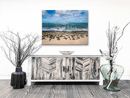 Turtle Beach | HD Metal Subscription