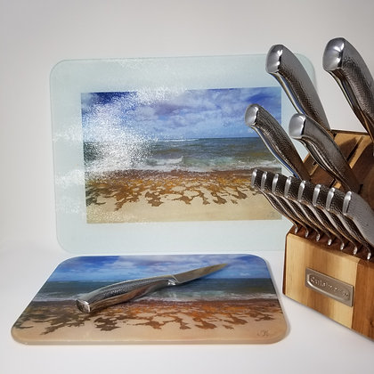 Glass Cutting Board/Serving Platters - Turtle Beach