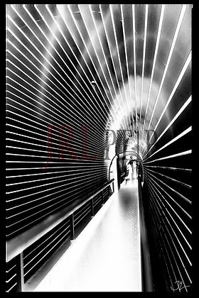 Portrait Wall Art - Tunnel Vision