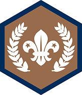 Be_Chief Scout Award_Bronze_CMYK.jpg
