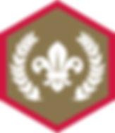 Sc_Chief Scout Award_Gold_CMYK.jpg