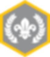 Cu_Chief Scout Award_Silver_CMYK.jpg