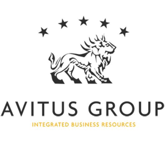 avitus group.jpg