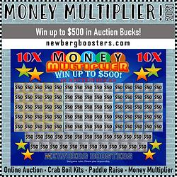 Auction 2021 Money Multiplier.png