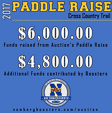 Paddle Raise 2017.png