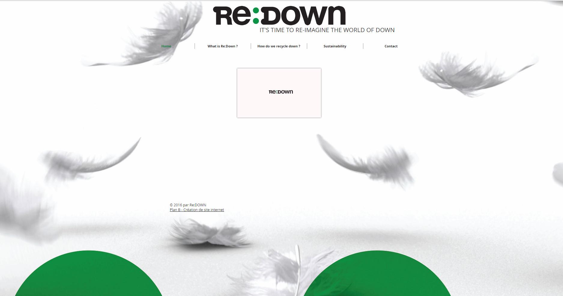 Site internet ReDown