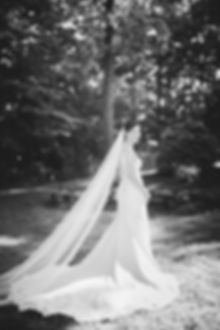 black and white portrait of bride in wedding gown in front of trees